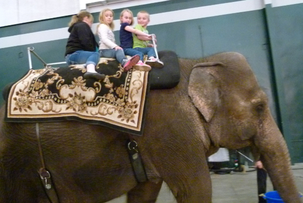 A whole family riding the elephant.